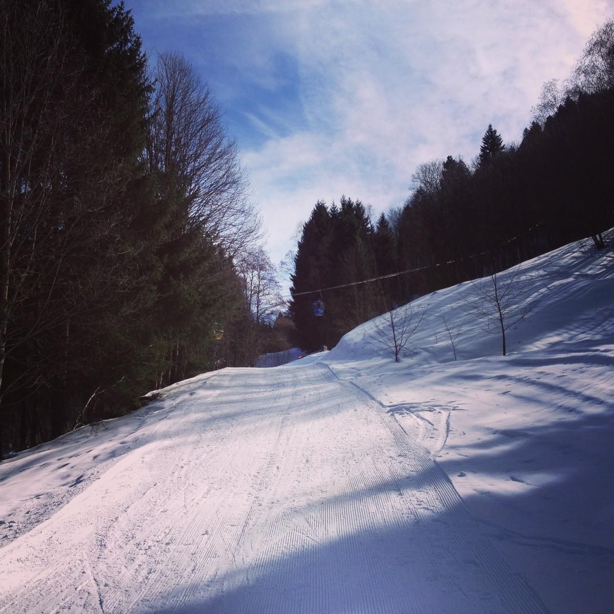 Queruni der Bahn - Skitouren-Lehrpfad am Eckbauer