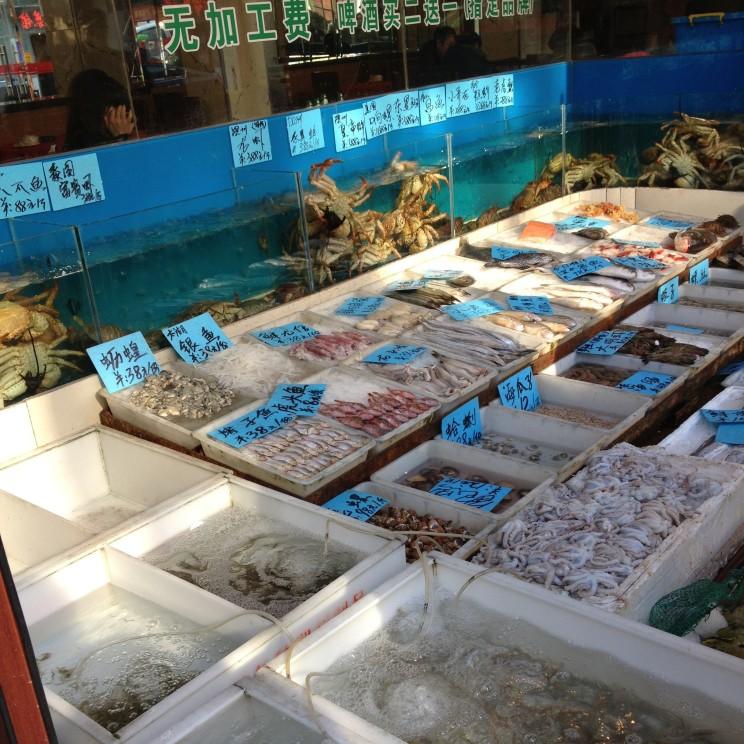 Fisch-Delikatessen zur Auswahl, Shanghai, China