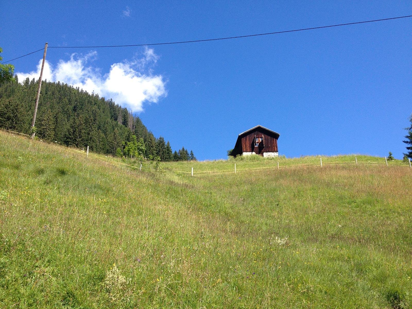 Im Abstieg nach Holzgau