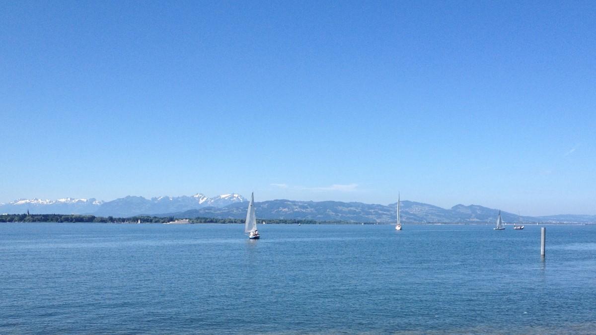 Bodensee und Säntis von Lochau gesehen