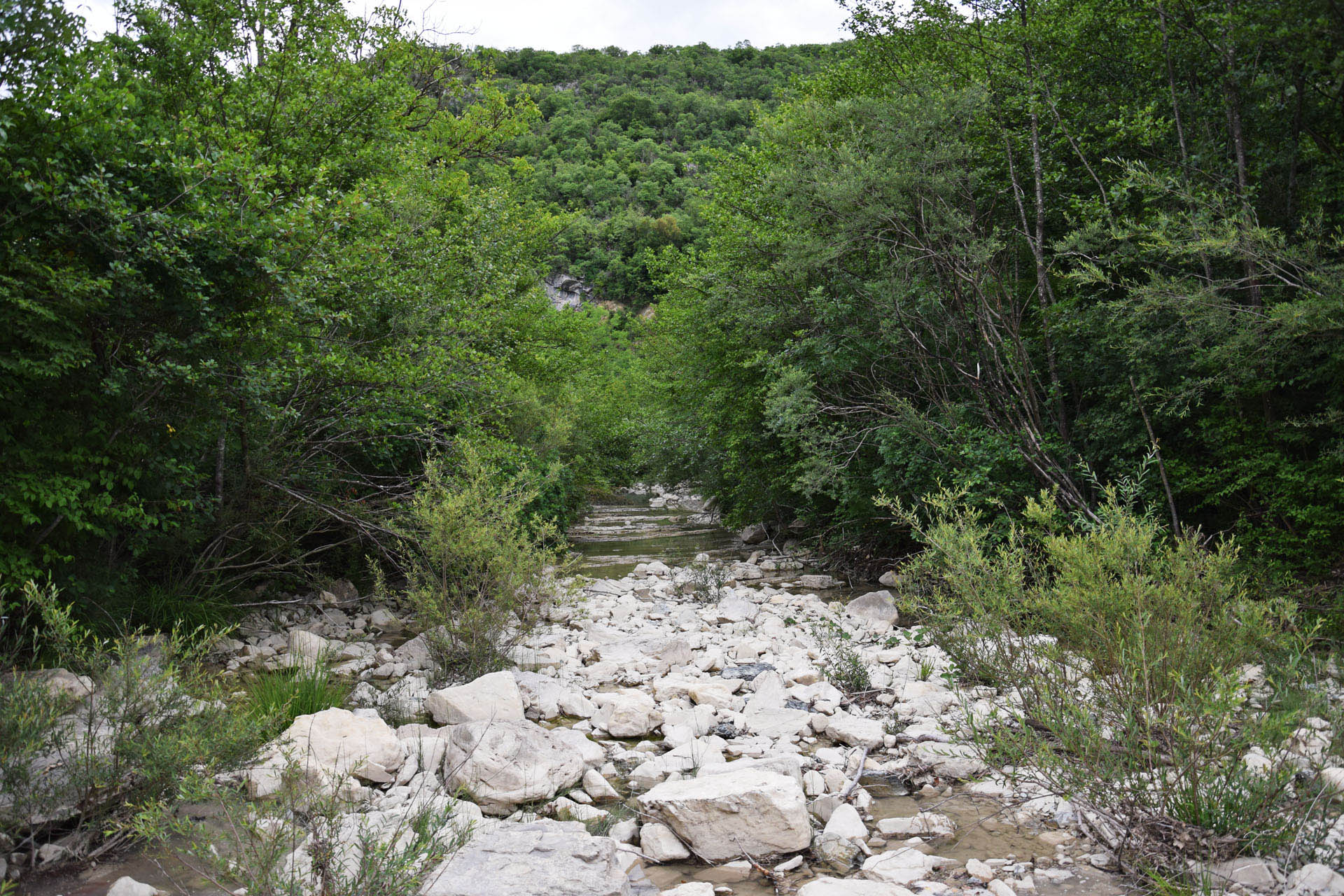 27 leeres Flussbett der Mirna