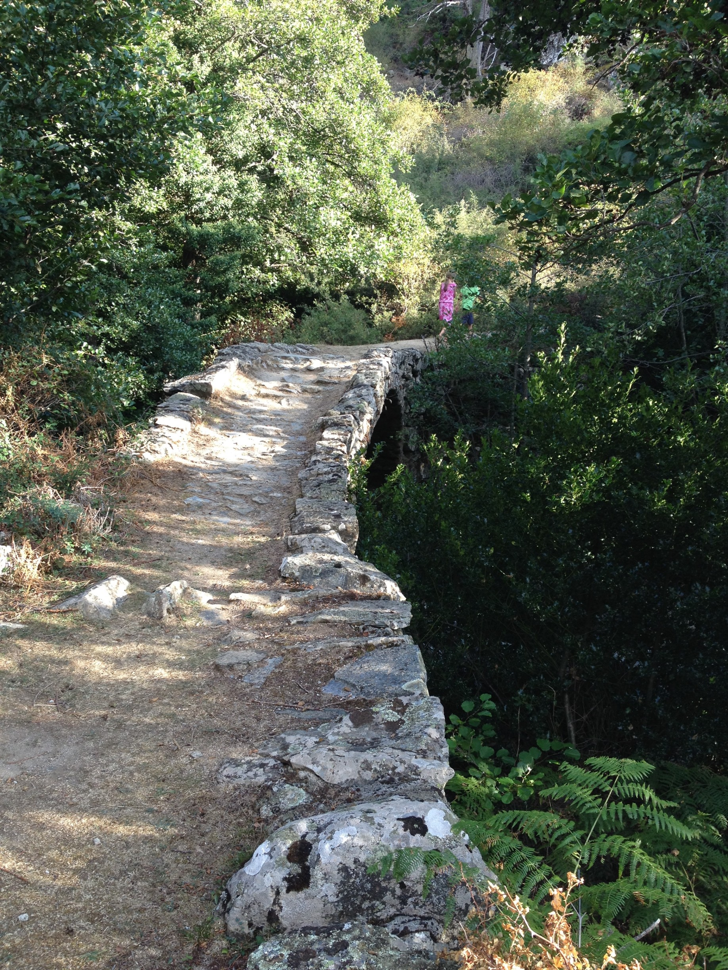 Lozzi: Gumpen bei der alten Brücke