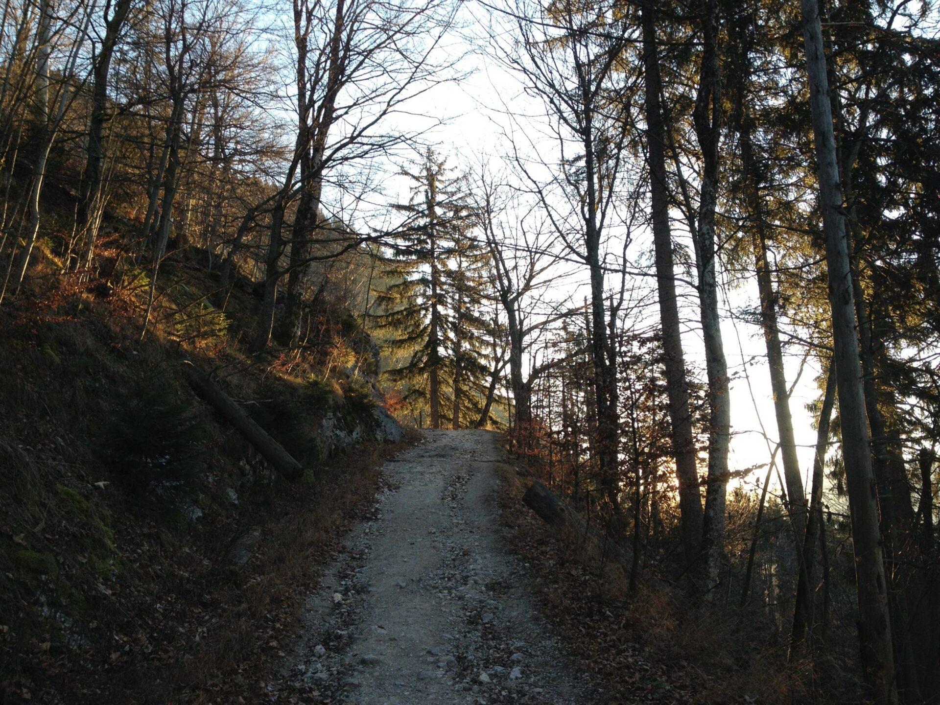 Abstieg nach Aschau