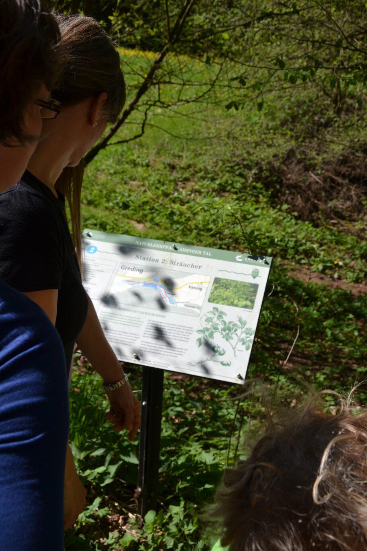 Auf den Tafeln finden sich Infos zur Flora und Fauna
