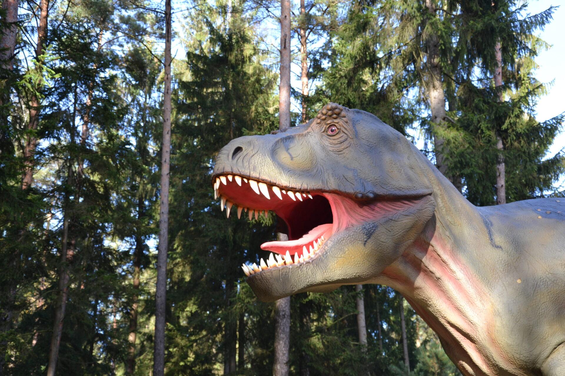Der T-Rex im Dinopark Altmühltal