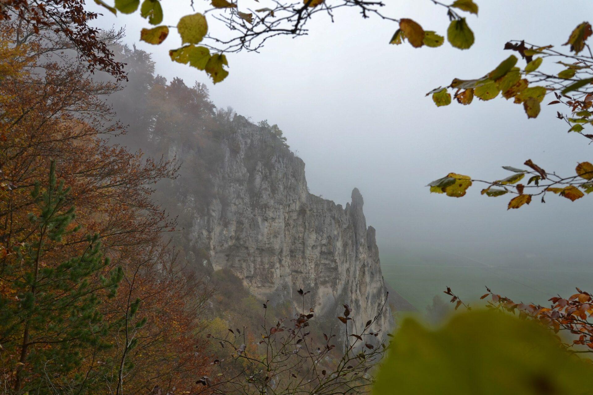 Der Dohlenfelsen im Nebel