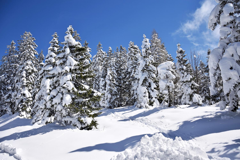Pendling: Winterlandschaft