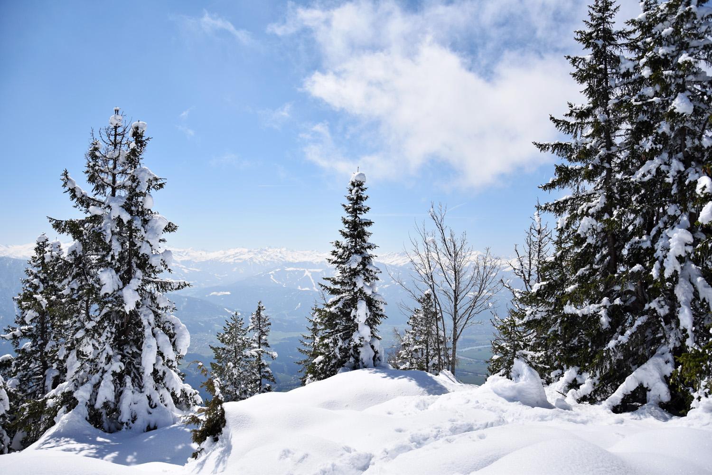 Pendling: Ausblick am alten Gipfelkreuz