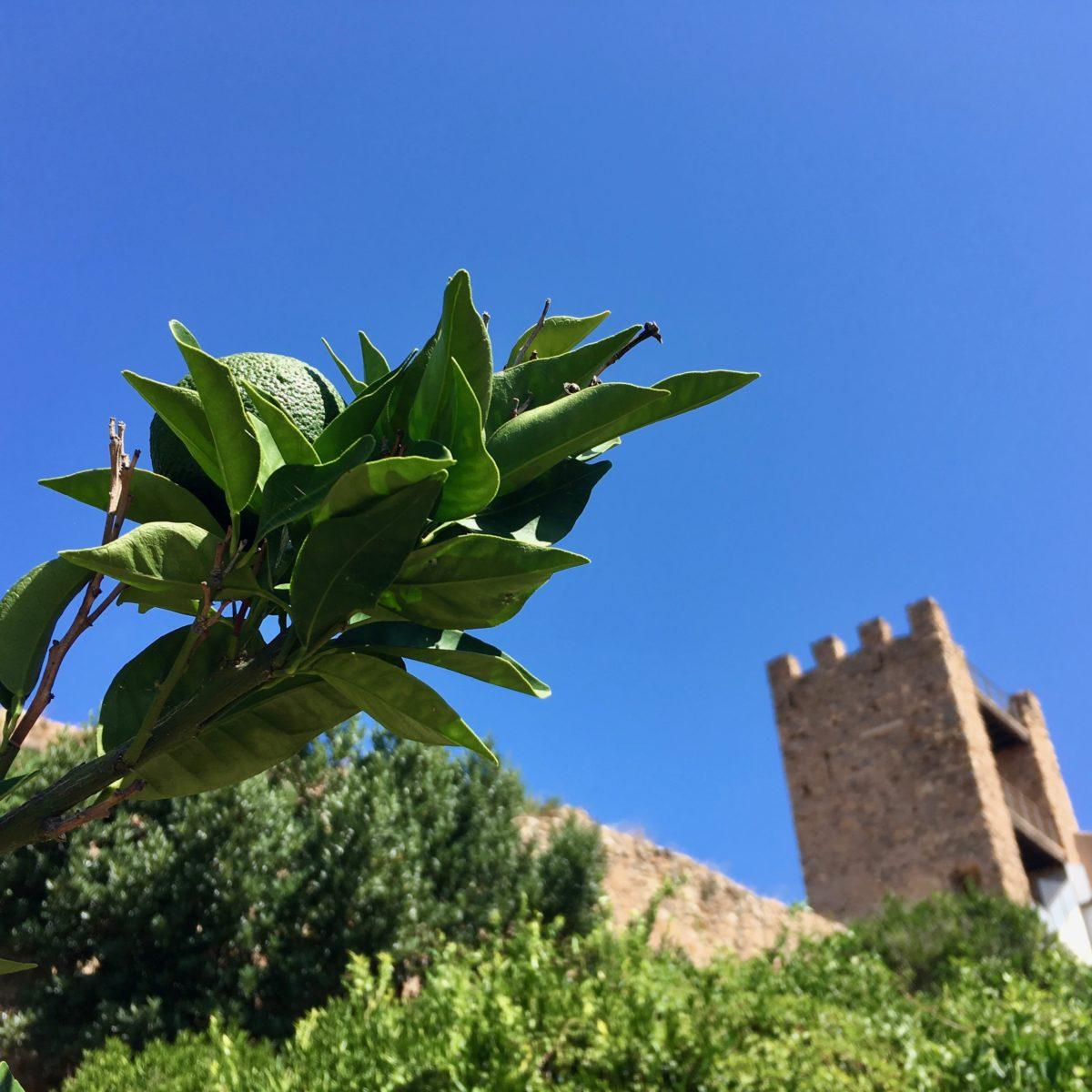 In der Altstadt von Iglesias