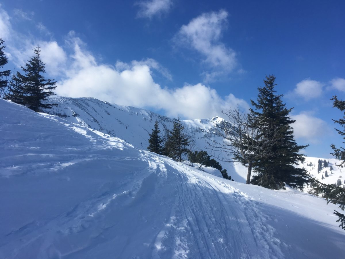 Der Gipfelgrat im Blick