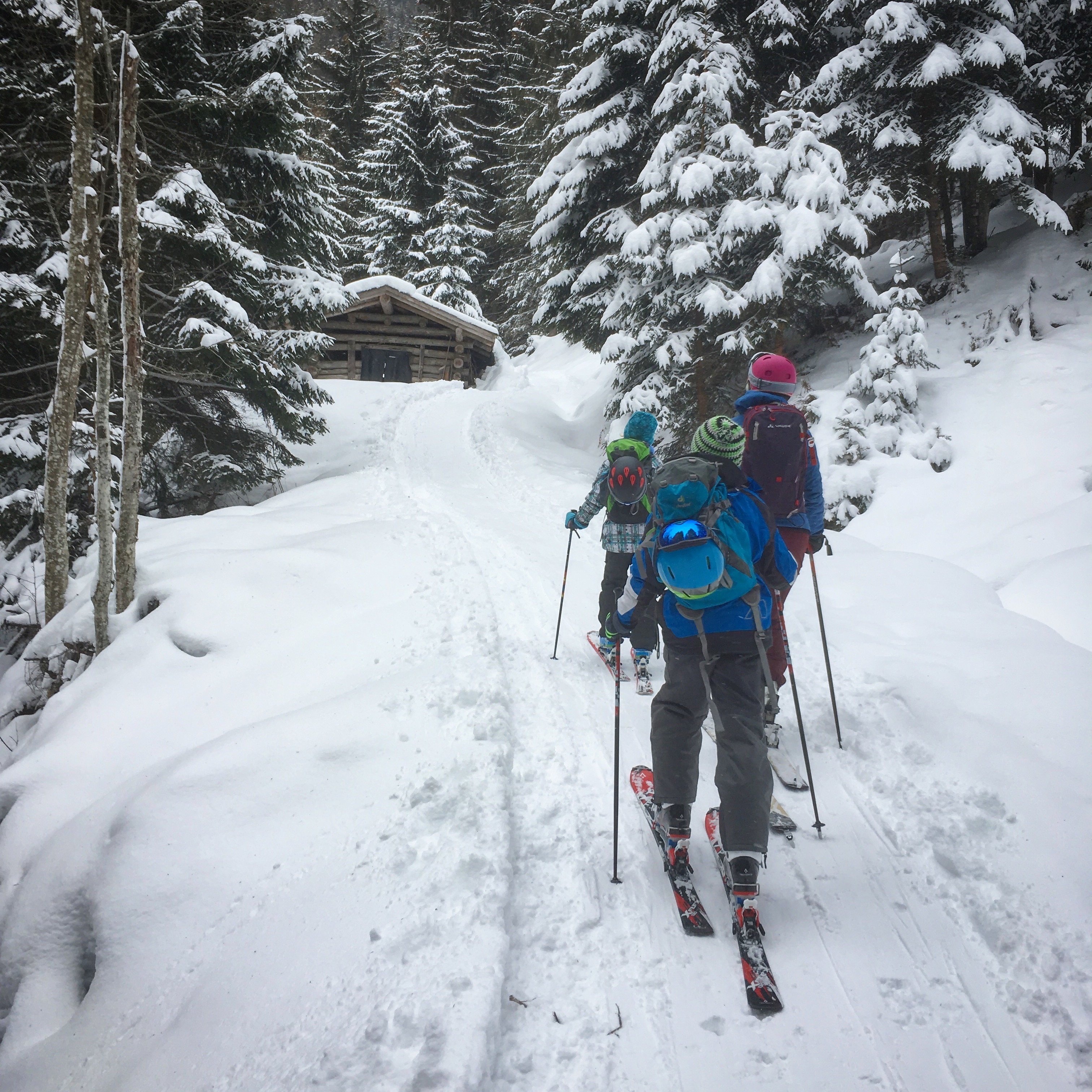 Auf Skitour mit Kindern: Durch den Wald ist spannender auf der Piste