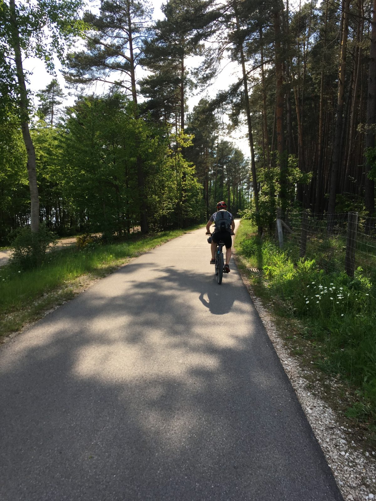 Herrliche Radwege führen um den Brombachsee