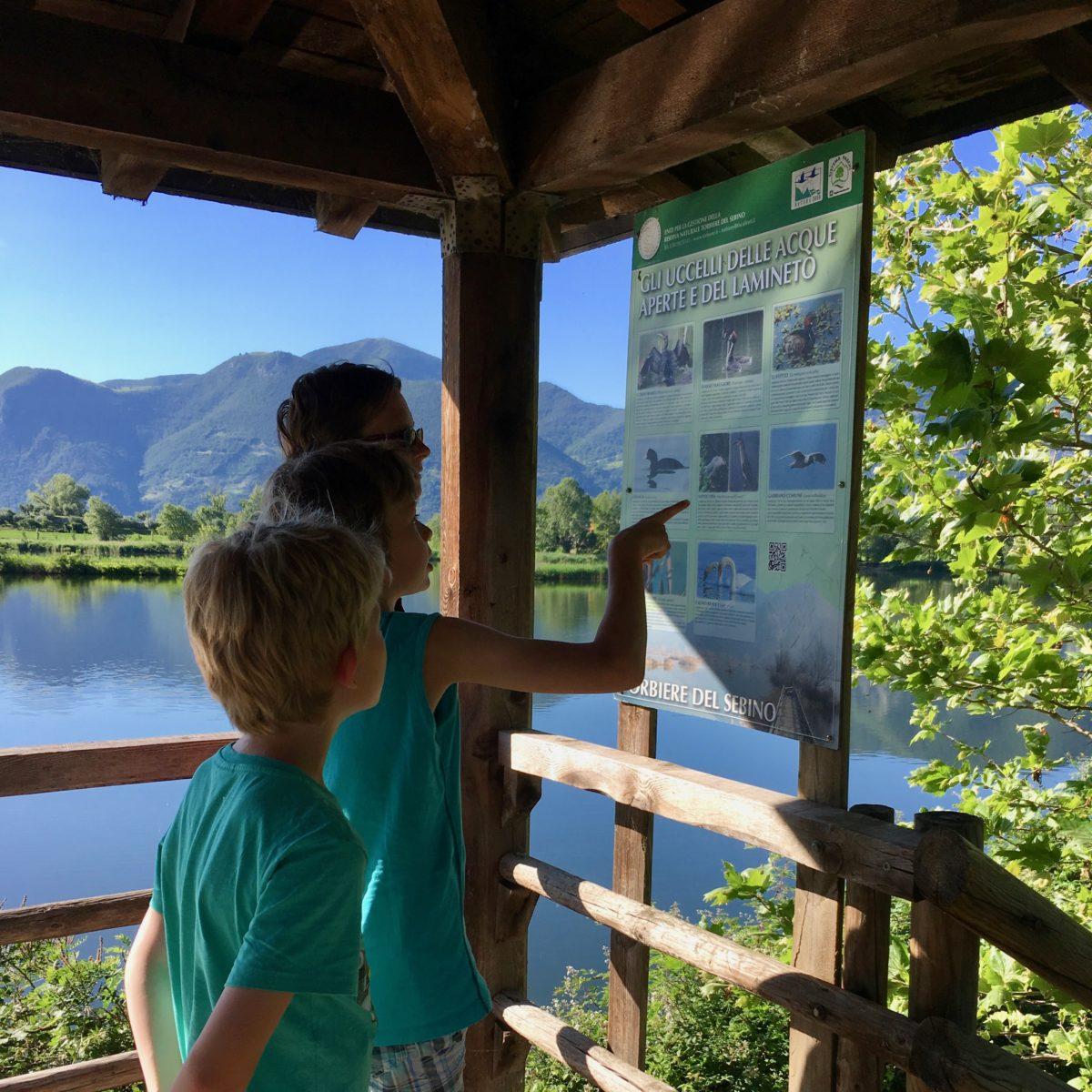 Infotafeln im Aussichtsturm in der Mitte des Sees