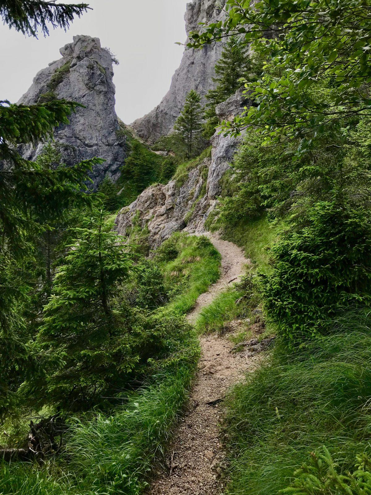 Vom Sonnberggrat hinüber zum Sonnberg