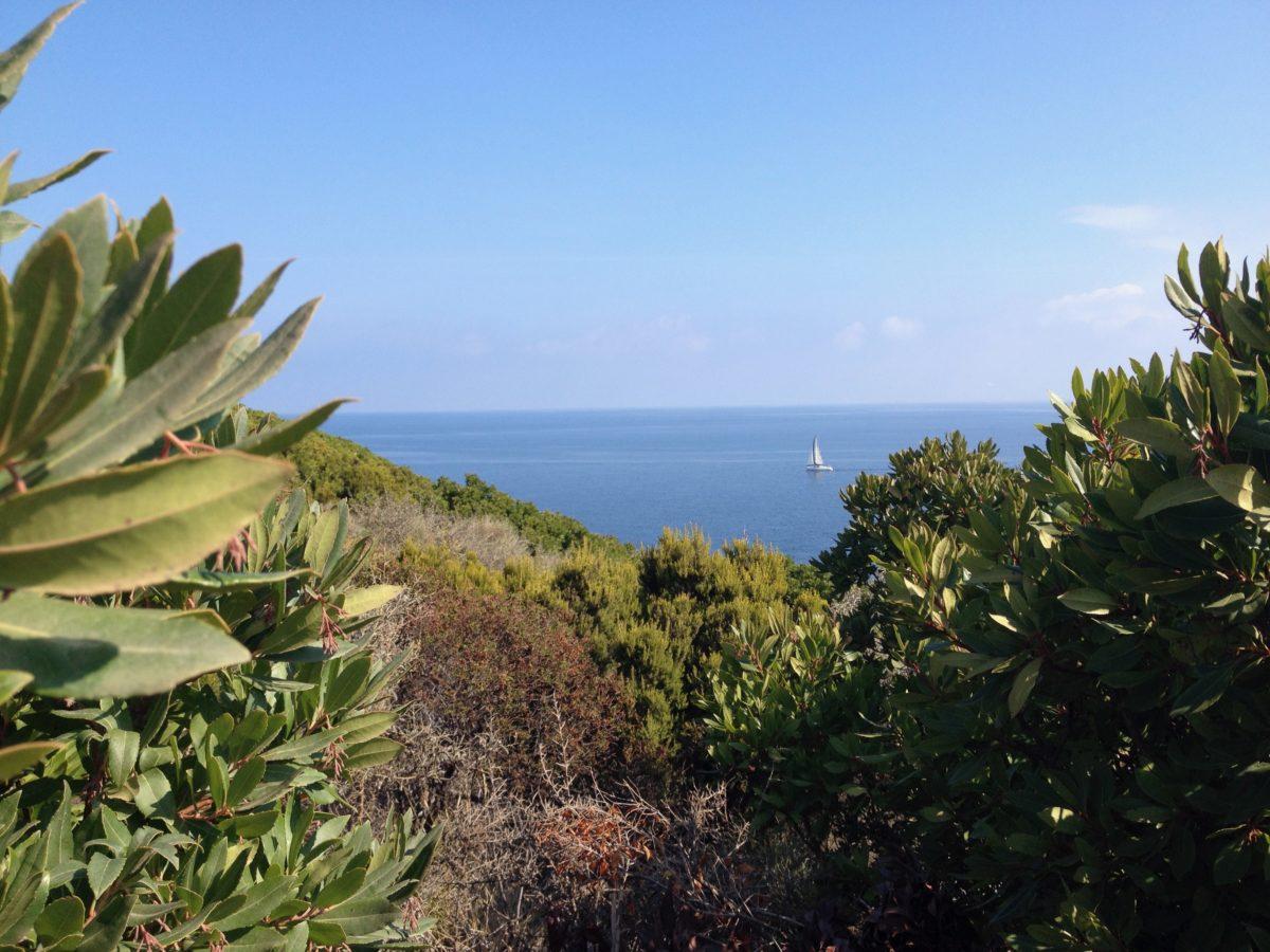 Zöllnerweg am Cap Corse