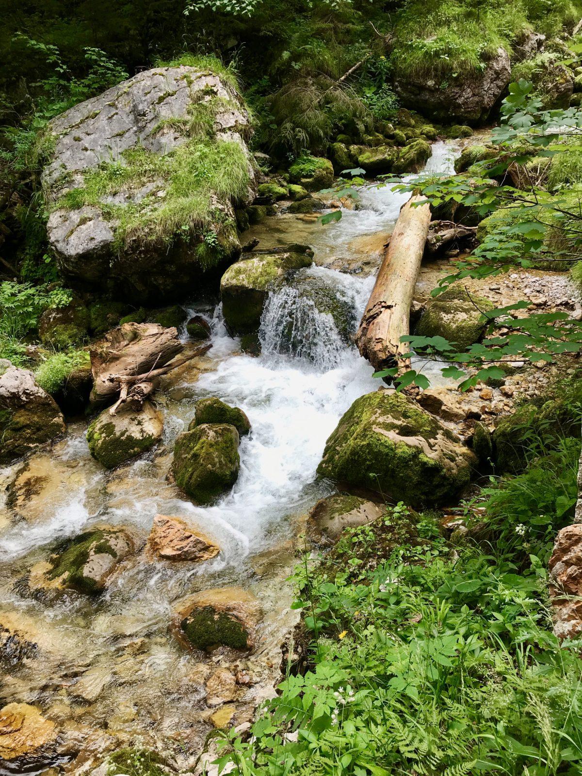 Im Hartelsgraben