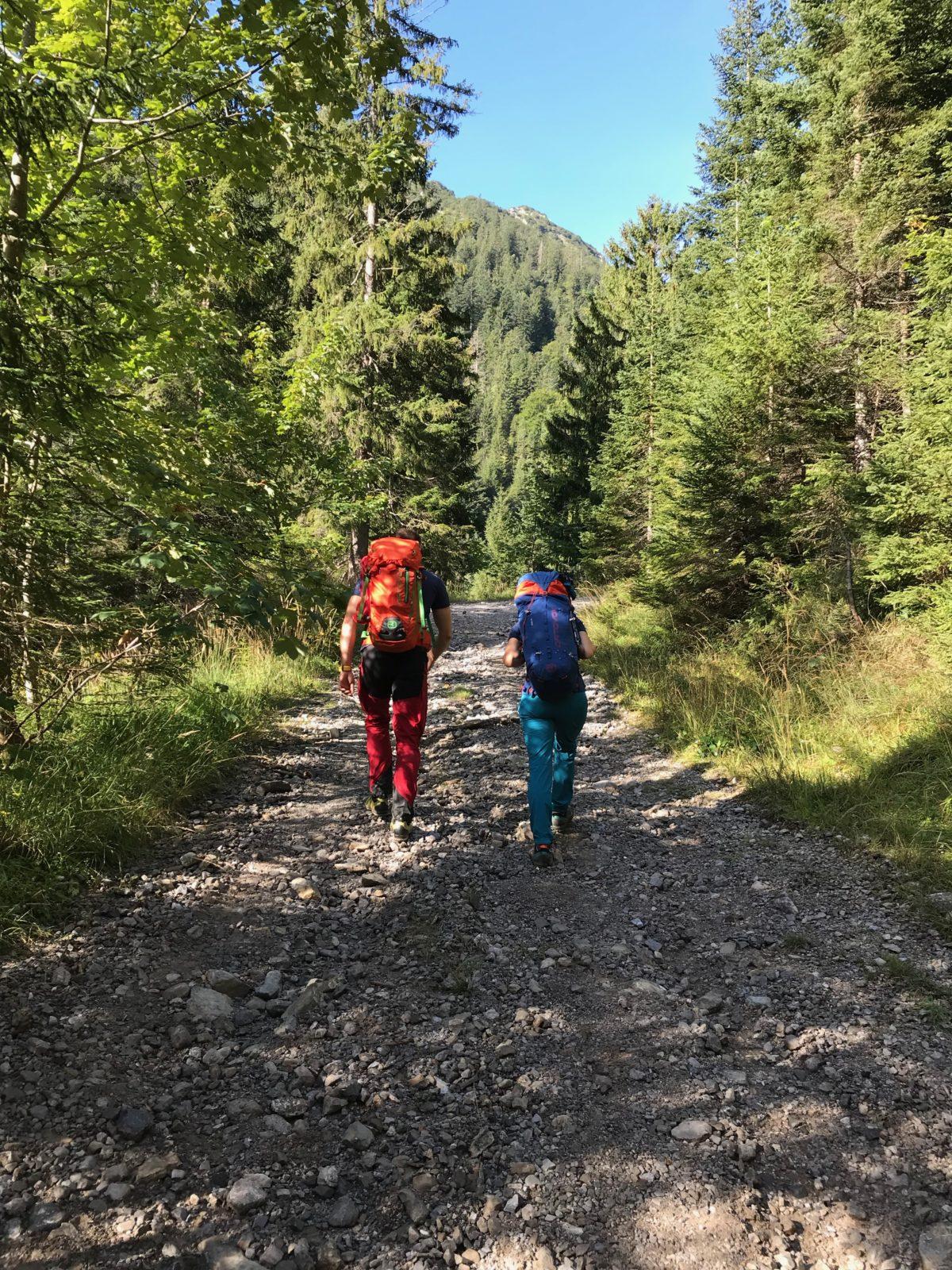 Durch das Jochbachtal zum Hornbachjoch