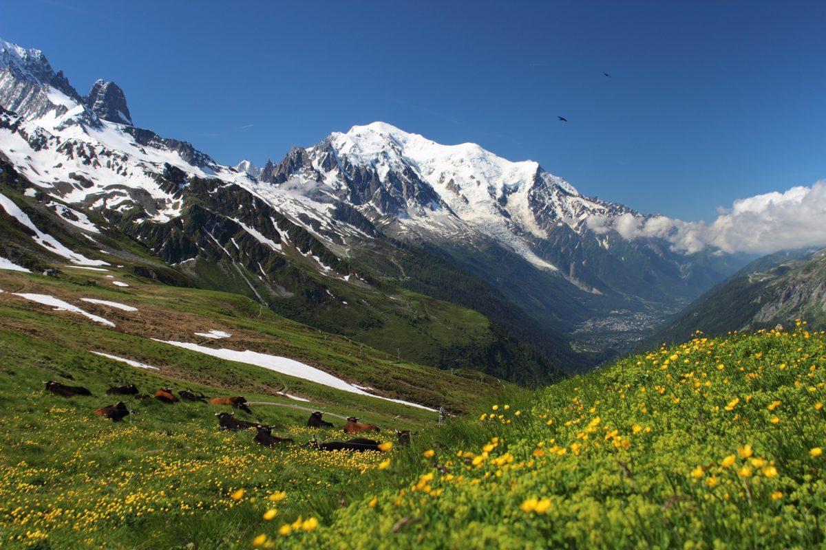 Mont Blanc, Bild von Steen Jepsen auf Pixabay